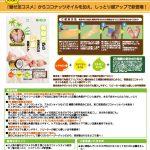 miseashi_coconuts_proposal02のサムネイル